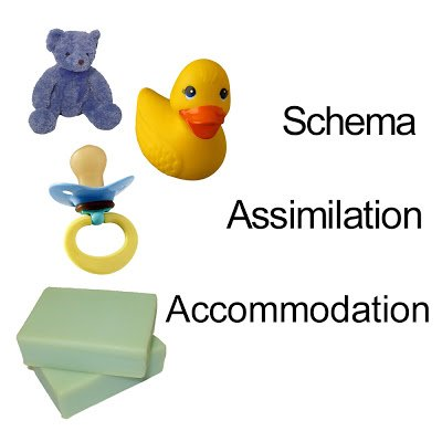 Difference between assimilation and accommodation.